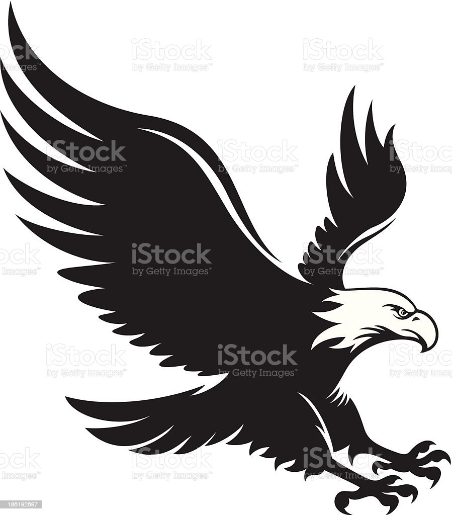 royalty free bald eagle flying clip art vector images rh istockphoto com vector eagle tree vector eagle images