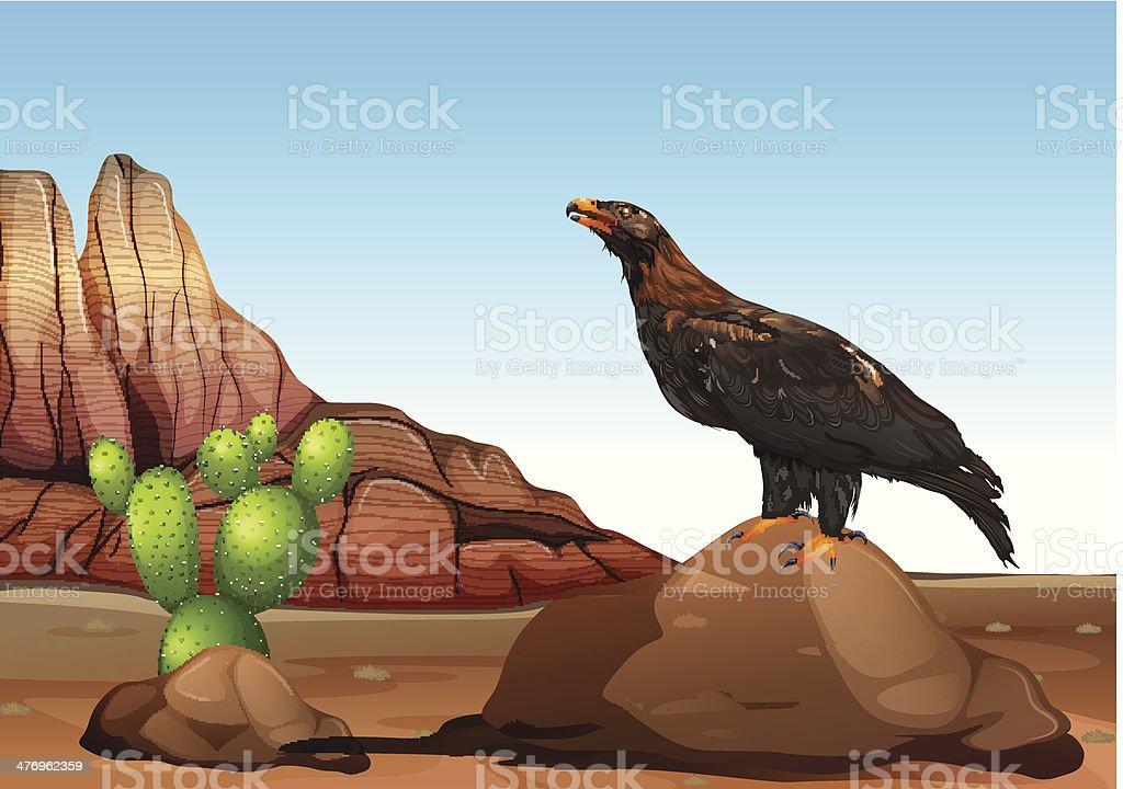 eagle - ilustración de arte vectorial
