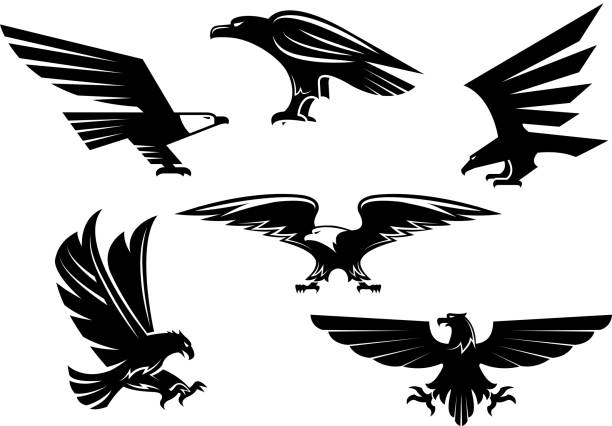 eagle vector isolated icons, heraldic bird emblems - eagle character stock illustrations, clip art, cartoons, & icons
