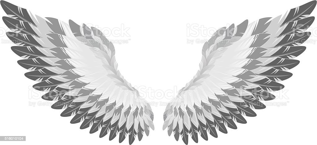 Eagle wing vector art illustration