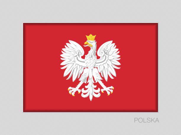 eagle with a crown. the national emblem of poland. national ensign aspect ratio 2 to 3 on gray cardboard. written in polish - polska stock illustrations