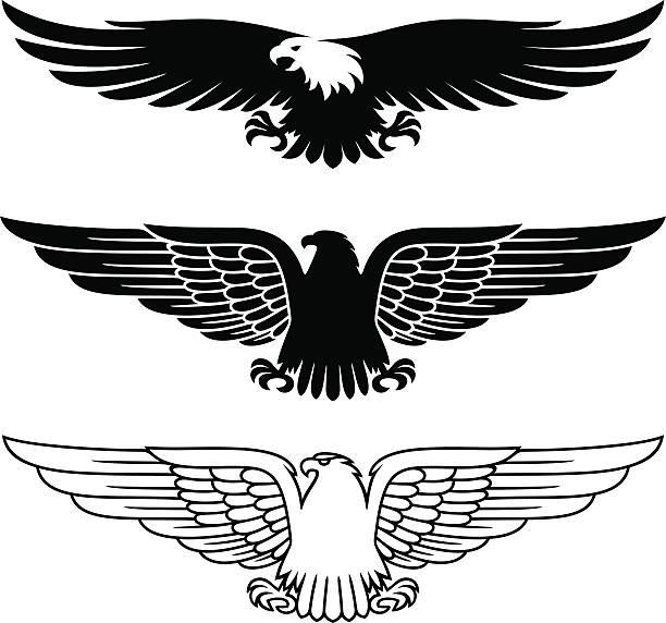 illustrations, cliparts, dessins animés et icônes de eagles ensemble - aigle