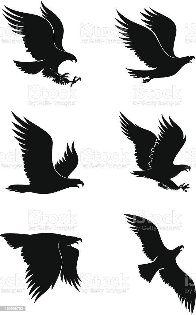 Eagles royalty-free stock vector art