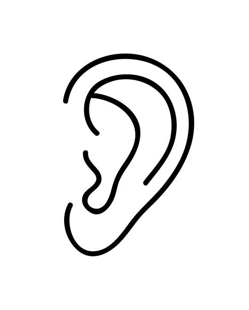 Ear icon. Continuous line art drawing. Vector illustration. Ear icon. Continuous line art drawing. Vector illustration. Black and white hand drawn line art style ear stock illustrations