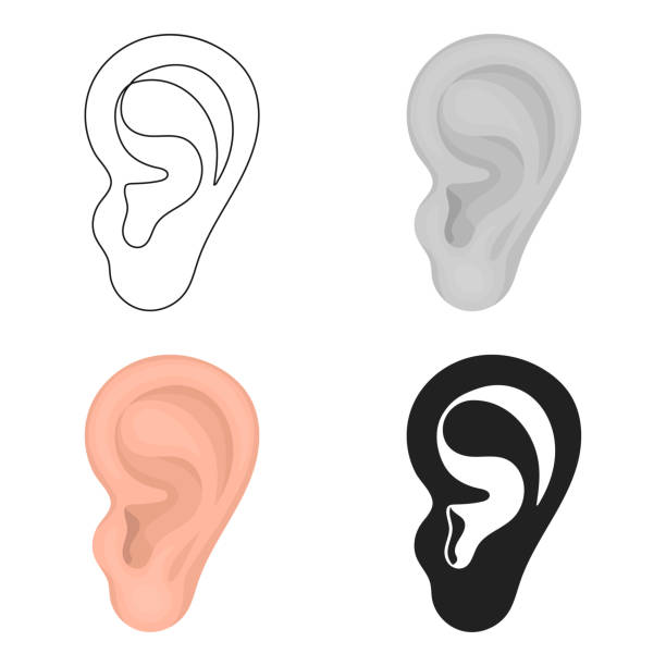 Ear icon in cartoon style isolated on white background. Part of body symbol stock vector illustration web - illustrazione arte vettoriale