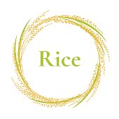 ear of rice logo design, circle frame vector, plant sign
