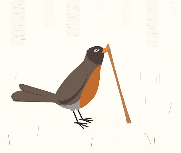 Early bird gets the worm The early bird gets the worm.  A retro styled robin has found an earthworm in the winter forest and is pulling it out of the ground.  The robin left his little footprints near the worm hole.  Birch trees are in the distance, softly fading into the winter scene.  Tiny grasses and rocks are scattered about the scene. worm stock illustrations