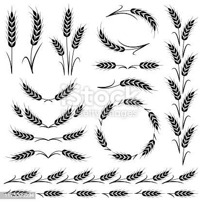 Stylized ears of wheat. Border frames, dividing lines and different shapes. Vector design elements isolated on a white background.