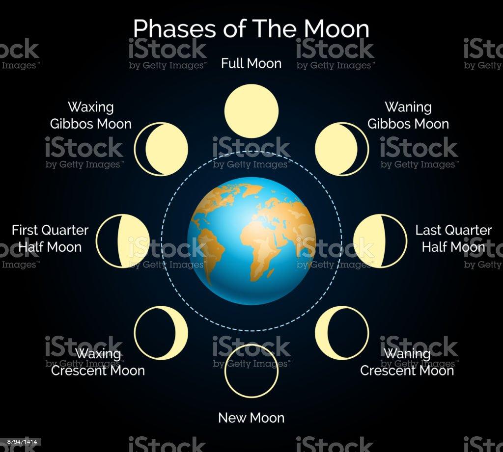 Ilustración de Tierra Y Fase Lunar Juego y más banco de imágenes de ...