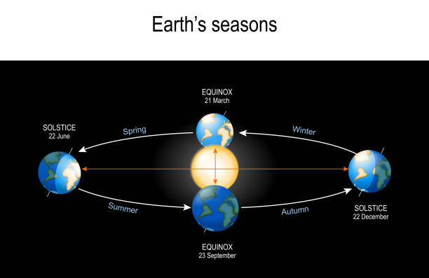 Earth's Seasons. The Earth's movement around the Sun. vector art illustration