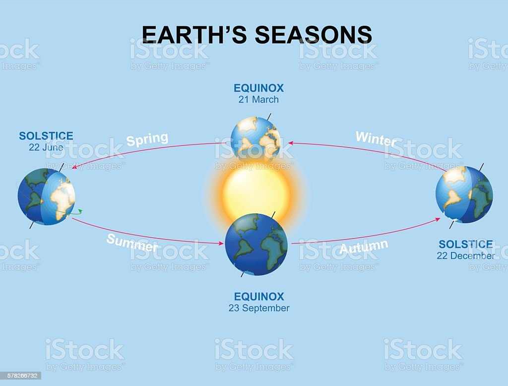 Earth's seasons vector art illustration