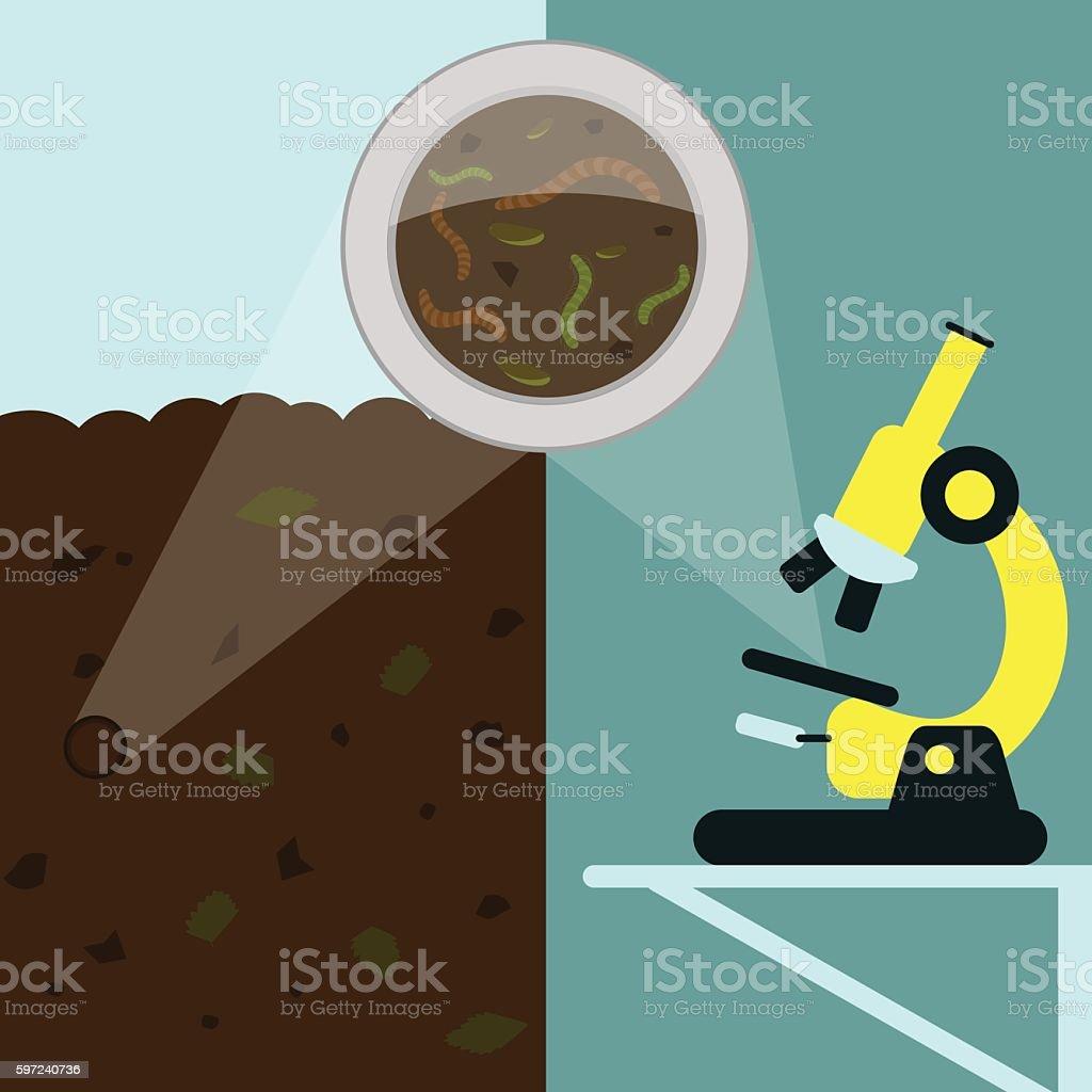 Earthworm analysis vector art illustration