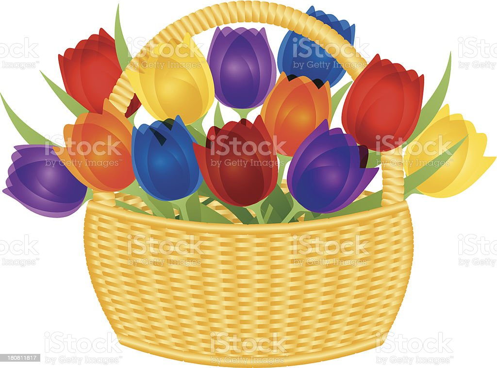 Easter Basket with Colorful Tulips Vector Illustration royalty-free stock vector art