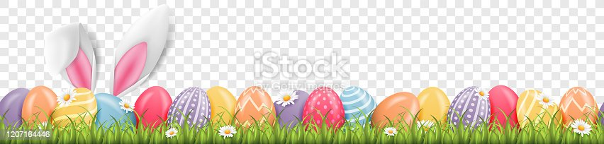 Easter bunny ears with easter eggs on meadow with flowers background banner transparent