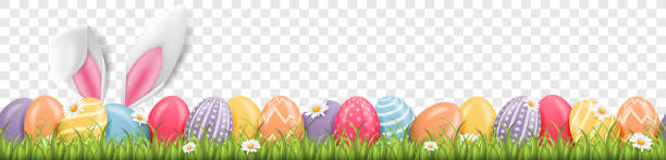 Easter bunny ears with easter eggs on meadow with flowers background banner transparent Easter bunny ears with easter eggs on meadow with flowers background banner transparent easter stock illustrations