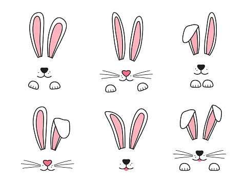 Easter bunny hand drawn, face of rabbits. Ears and muzzle with whiskers, paws. Vector