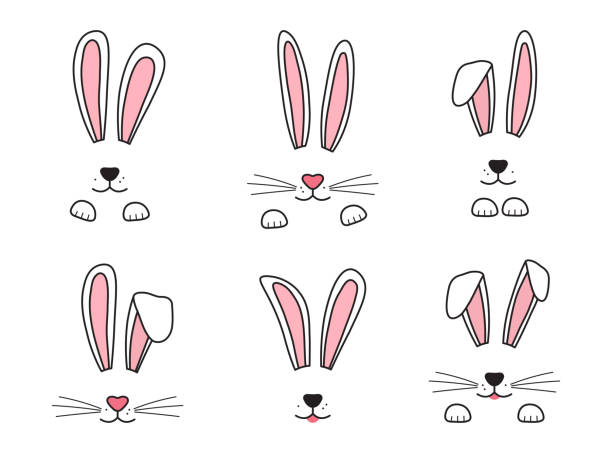 Easter bunny hand drawn, face of rabbits. Ears and muzzle with whiskers, paws. Vector Easter bunny hand drawn, face of rabbits. Ears and muzzle with whiskers, paws. Vector illustration rabbit stock illustrations