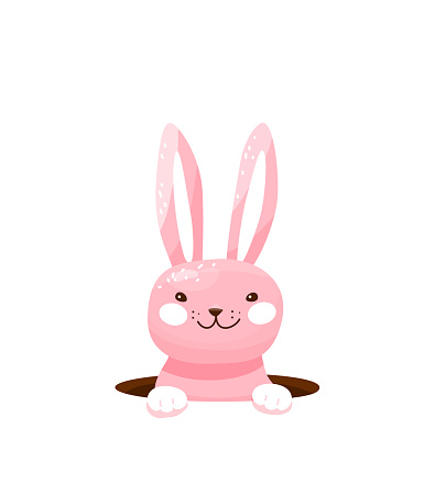Easter bunny hide in the hole vector illustration. Happy funny pink rabbit, eggs hunt