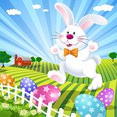 Easter bunny on the farm.
