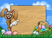 Cartoon Easter bunny rabbit peeking around a wooden sign and pointing with a basket hamper of chocolate Easter eggs