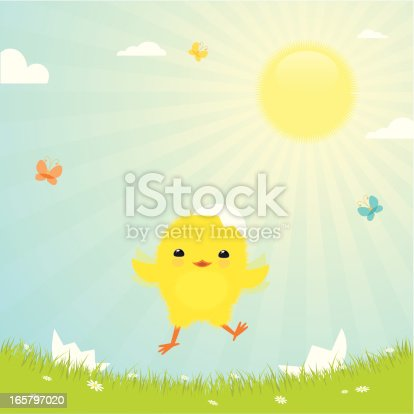 istock Easter chick 165797020