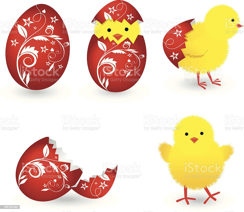 Easter Chicken royalty-free easter chicken stock vector art & more images of animal