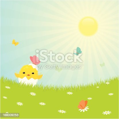 istock Easter chicken 166009253