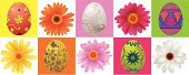 Illustration of beautiful Easter Eggs and daisies flower, all elements are individual objects, used simple gradient colors, No transparencies. Hi res jpeg included. User can edit easily, Please view my profile.
