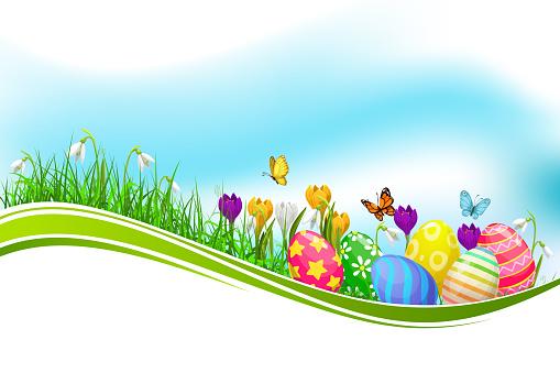 Easter eggs green grass wave vector design element