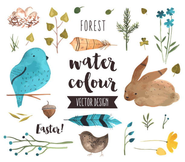Easter Elements Watercolor Vector Objects Premium quality watercolor icons set of spring celebration, Easter egg happiness. Hand drawn realistic vector decoration with text lettering. Flat lay watercolour objects isolated on white background. young animal stock illustrations