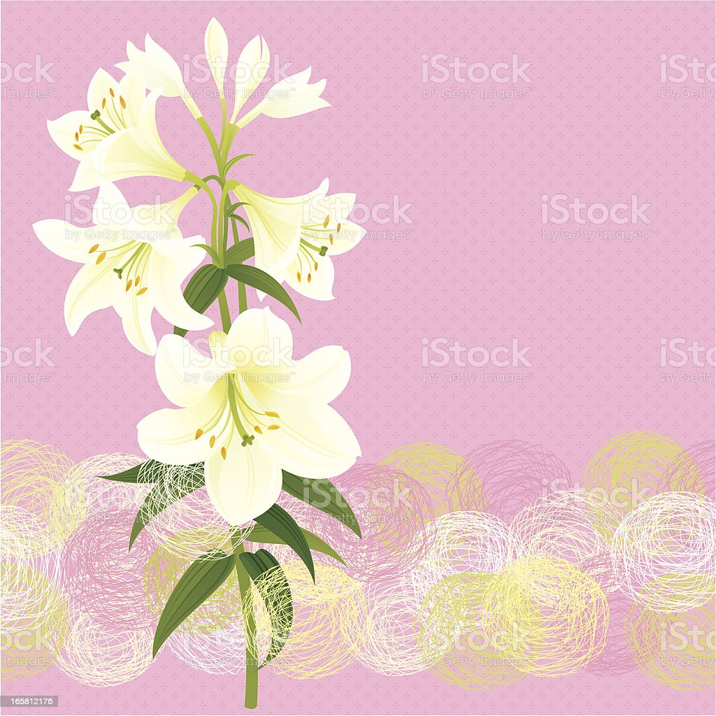 Easter White Lily vector art illustration
