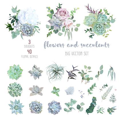 Echeveria, tillandsia blue, grey, mint succulents, white hydrangea, pale pink rose