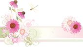 Horizontal vector background in watercolor-style with Echinacea Purple Coneflower and dragonfly.