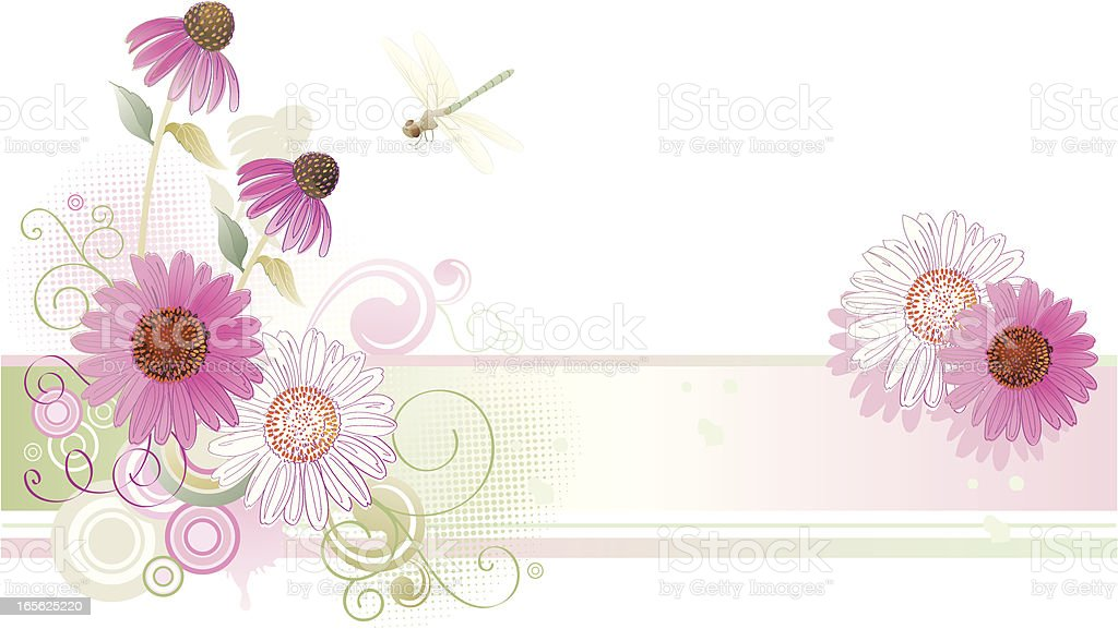 Echinacea Purple Coneflower Background With Dragonfly vector art illustration