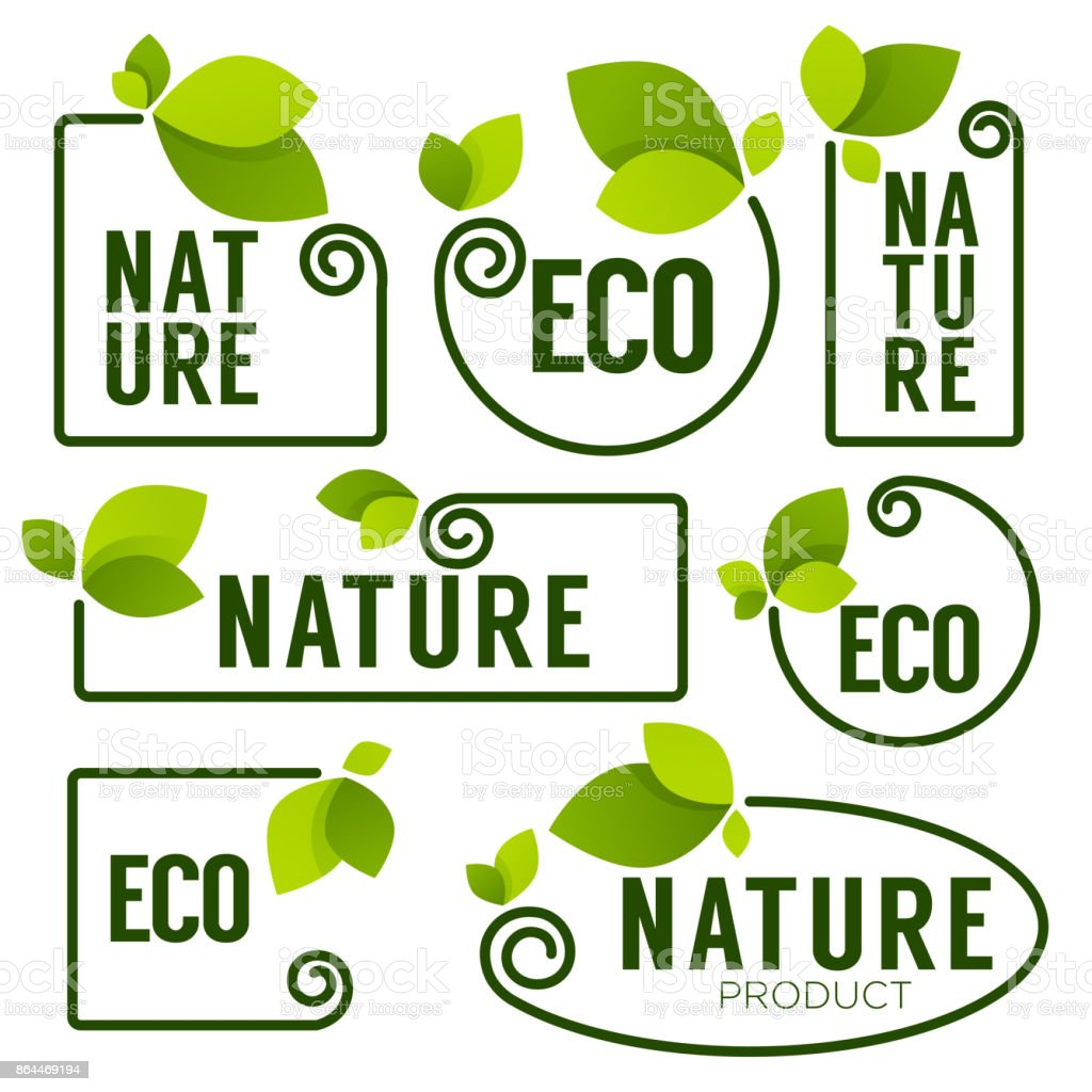 Eco And Nature Green Fresh Leaves Emblems Elements Frames Stock ...