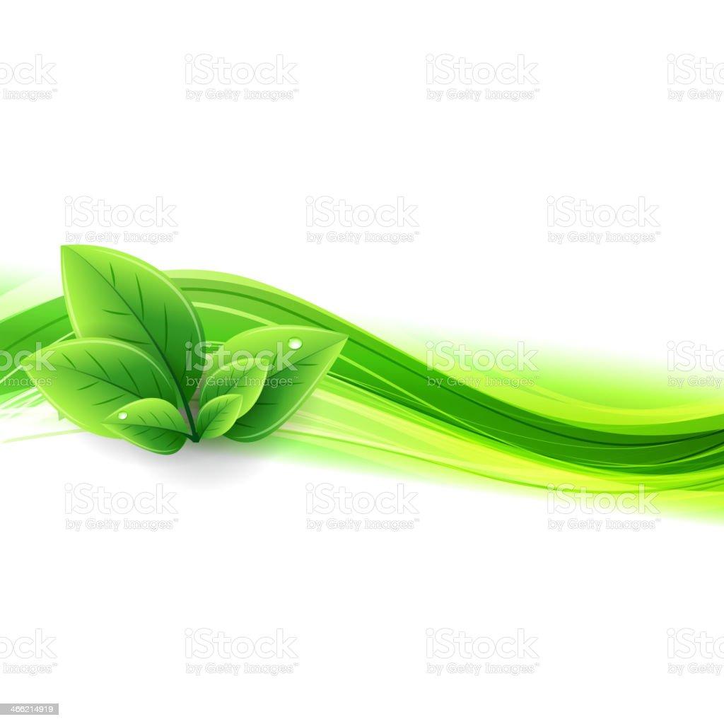 Eco banner con onda y hojas - ilustración de arte vectorial