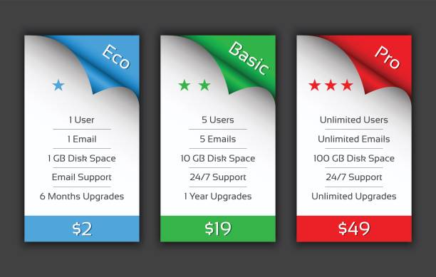eco, basic and pro pricing plans for your website and aplications - pricing infographics stock illustrations, clip art, cartoons, & icons