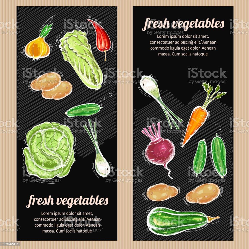 Eco farmer vegetables, potato, carrot, cabbage, pepper. Healthy nutrition concept. Vegetables banner. Fresh vegetarian healthy food of vector chalk sketch vector art illustration