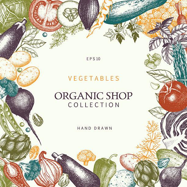 Eco comida modelo com legumes esboço desenhado à mão - ilustração de arte em vetor