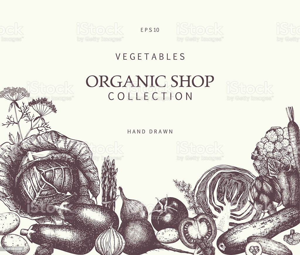 Eco food template with hand drawn vegetables sketch vector art illustration