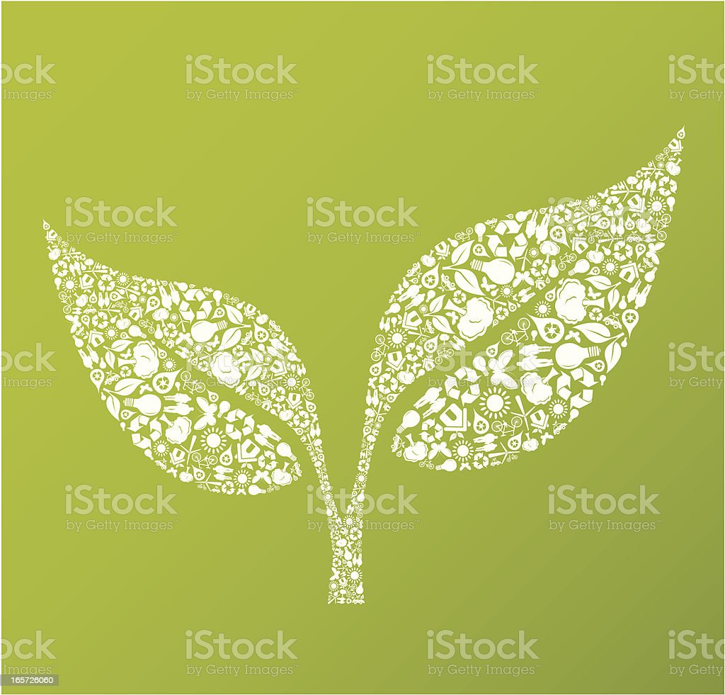 Eco friendly green leaf royalty-free eco friendly green leaf stock vector art & more images of alternative energy