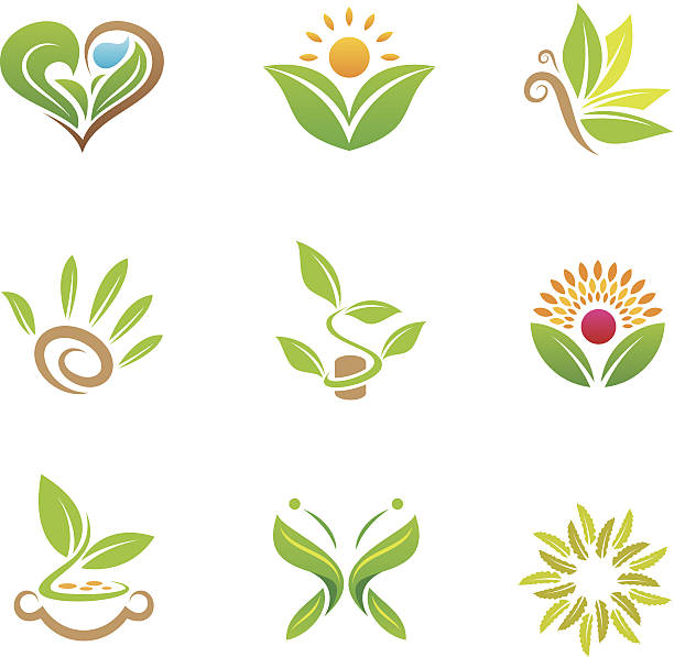 eco friendly nature and healthy green business for the world - naturopathy stock illustrations, clip art, cartoons, & icons