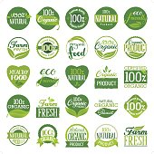 A set of 25 organic and natural icon set with hand drawn typography. Each icon is grouped individually.