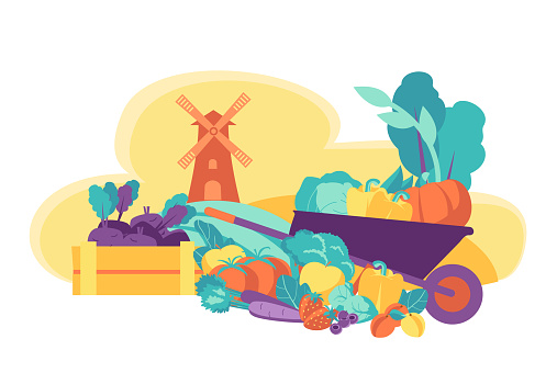 Eco friendly seasonal products. Fresh vegetables and fruits.