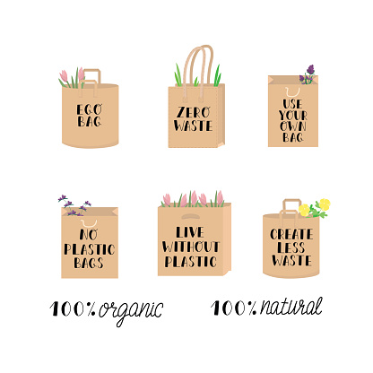 Eco guotes with paper bag and flowers, eco poster. Zero waste, no plastic bag, live without plastis, create less waste. Hand writing sign set isolated on white background. Vector stock illustration.