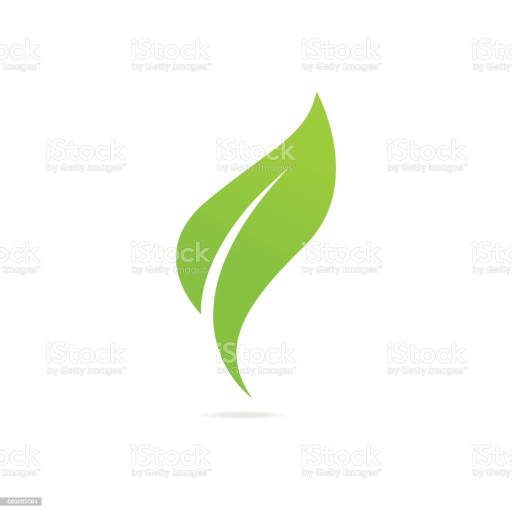 grünes Blatt Eco-Symbol Vektor-illustration isoliert. – Vektorgrafik