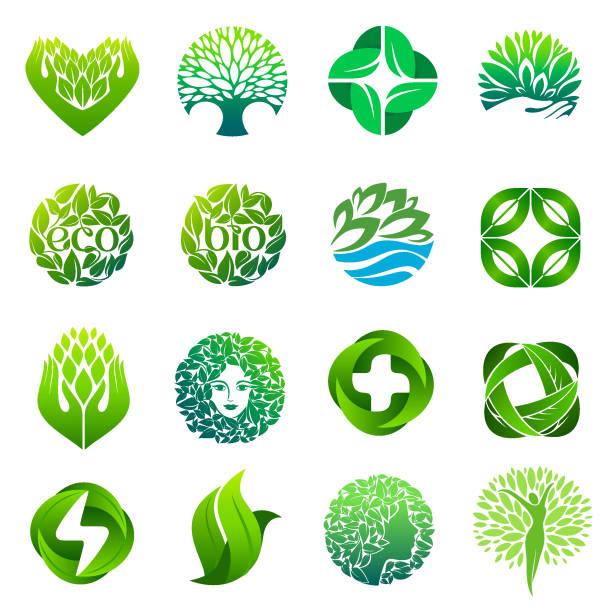 ilustraciones, imágenes clip art, dibujos animados e iconos de stock de eco, orgánico, bio icono conjunto. diseño de icono de vector de wellness, spa, farmacia - medicina alternativa
