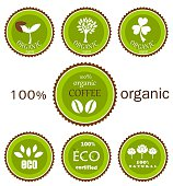 Ecological organic icons or labels in green and brown colors for food products. Vector design