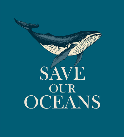 eco poster concept with a big hand-drawn whale