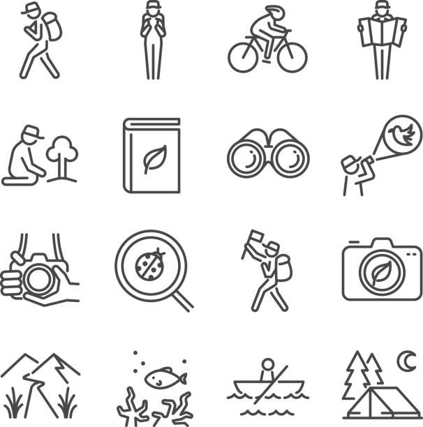 Eco tourism line icon set. Included the icons as traveler, camera, map, tourist, view, bird watching, camping and more. vector art illustration